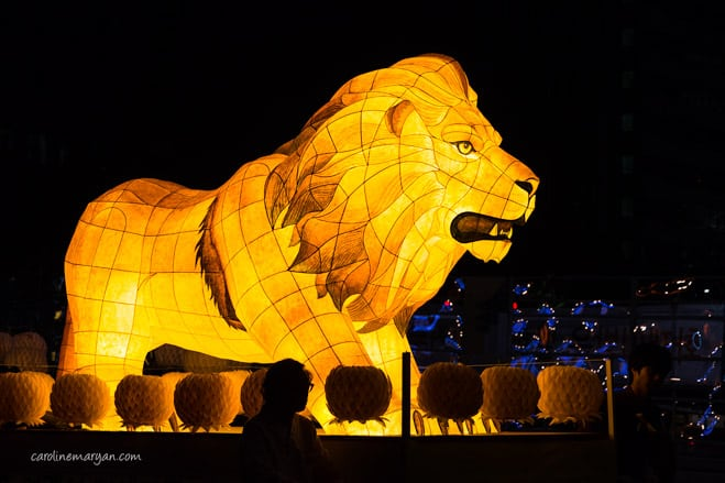 lion lantern at Lotus Lantern Festival
