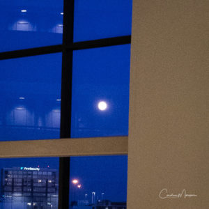 """A """"properly exposed"""" shot of the harvest moon across the atrium of the Little Rock Marriott."""