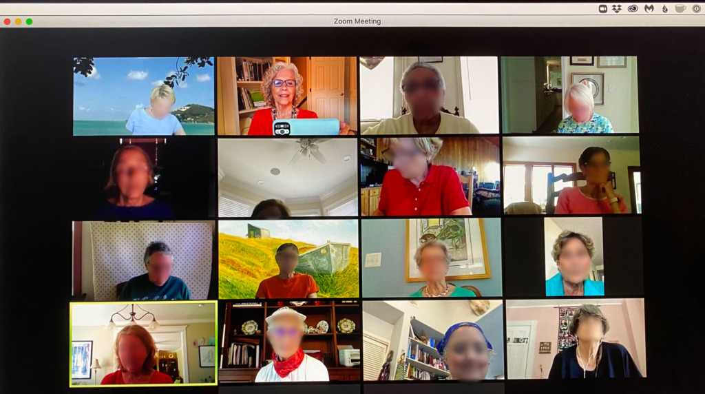 TV Screen Shot of a Zoom Meeting with blurred faces