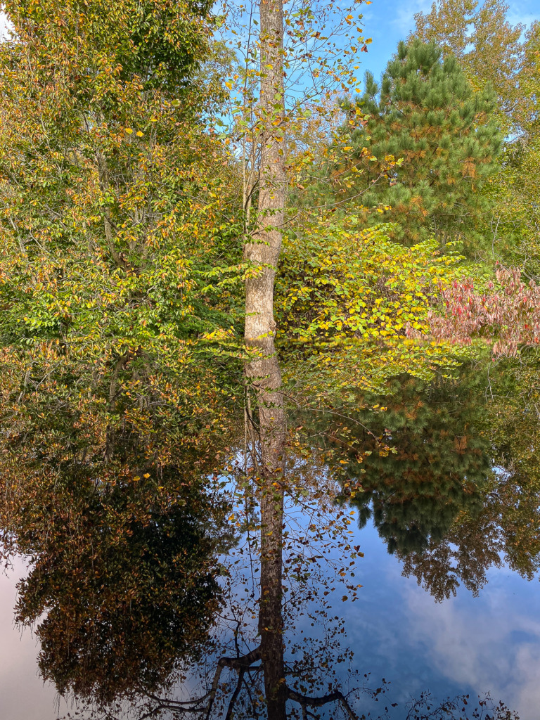Using iPad as reflective surface for a great reflection shot with your iPhone