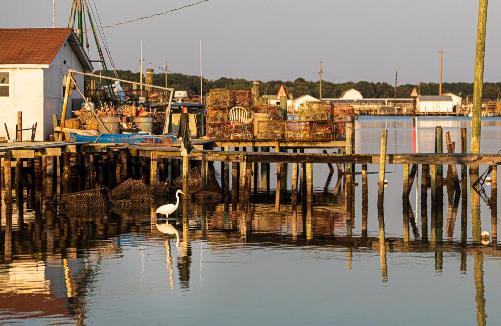 shooting photos of Tangier Island is better at sunset